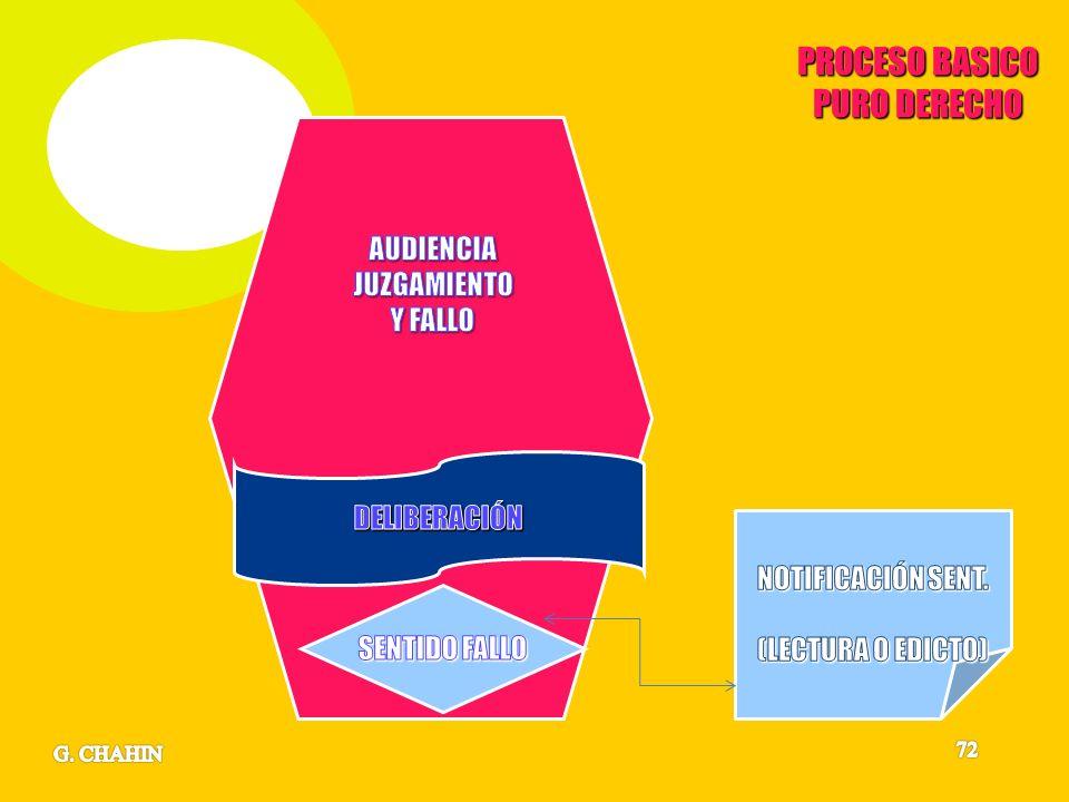 PROCESO BASICO PURO DERECHO AUDIENCIA JUZGAMIENTO Y FALLO DELIBERACIÓN