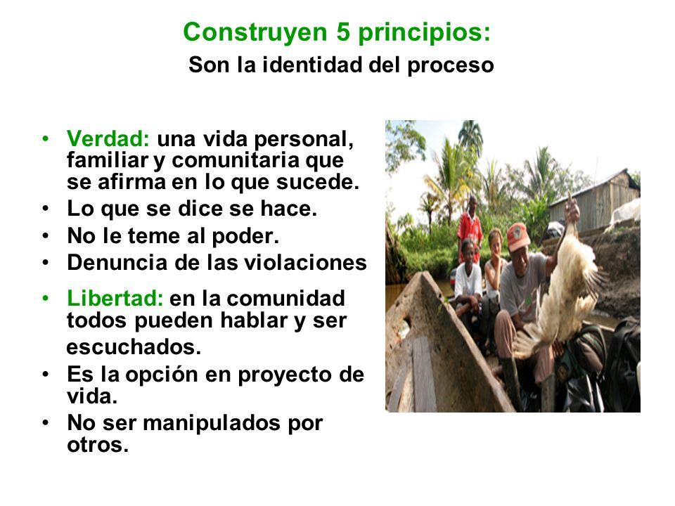 Construyen 5 principios: Son la identidad del proceso