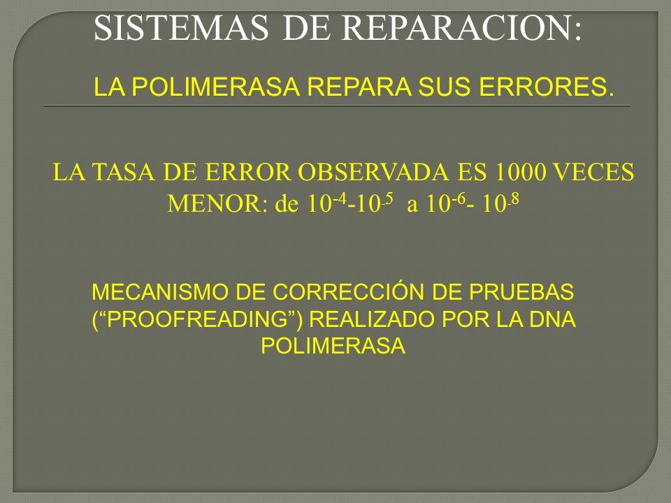 SISTEMAS DE REPARACION:
