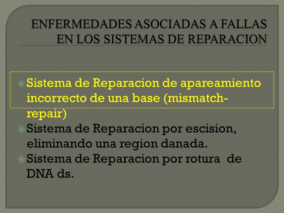 ENFERMEDADES ASOCIADAS A FALLAS EN LOS SISTEMAS DE REPARACION