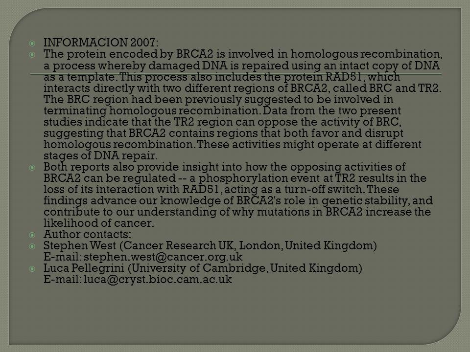 INFORMACION 2007: