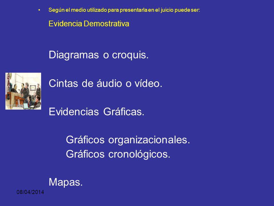 Evidencia Demostrativa Diagramas o croquis.
