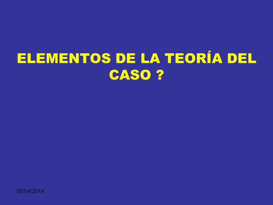 ELEMENTOS DE LA TEORÍA DEL CASO