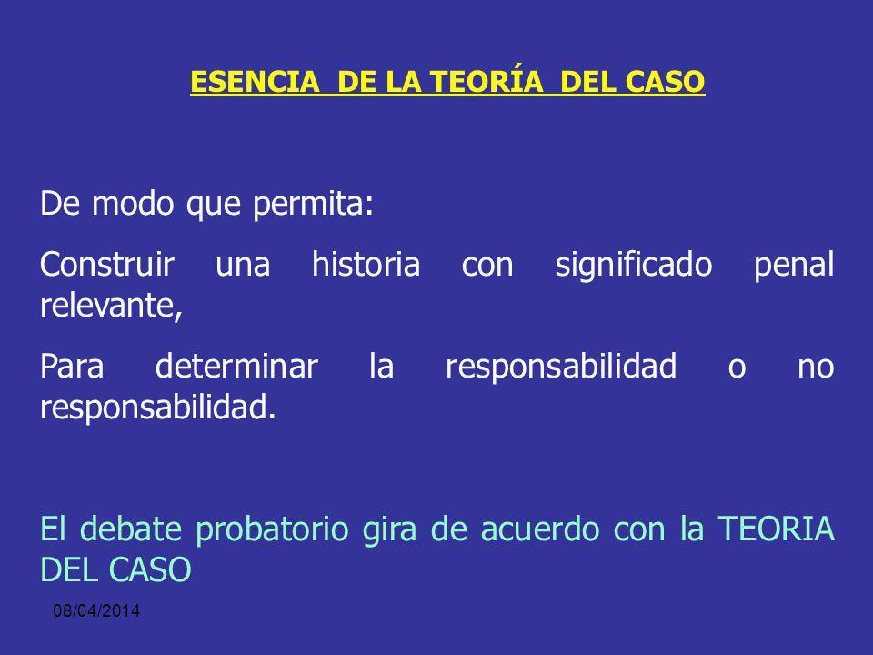 ESENCIA DE LA TEORÍA DEL CASO