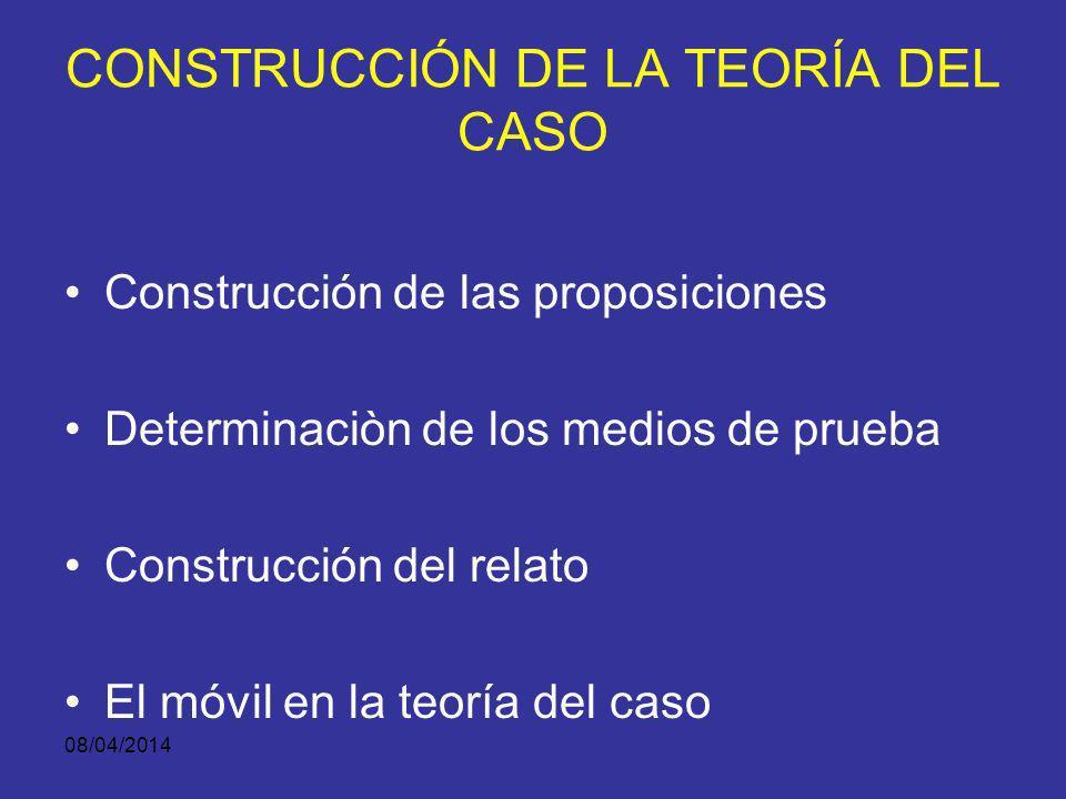 CONSTRUCCIÓN DE LA TEORÍA DEL CASO