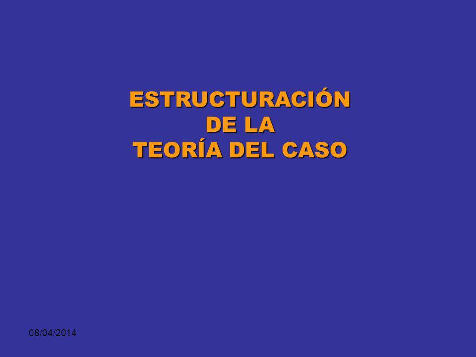 ESTRUCTURACIÓN DE LA TEORÍA DEL CASO 29/03/2017