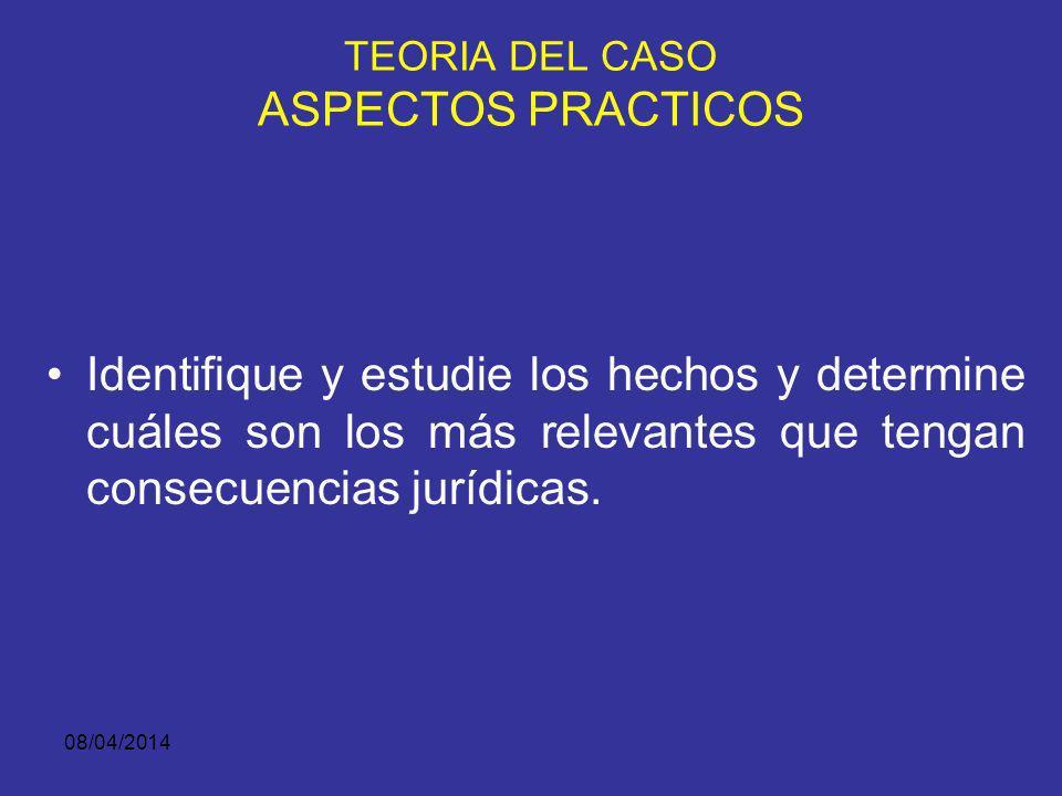 TEORIA DEL CASO ASPECTOS PRACTICOS