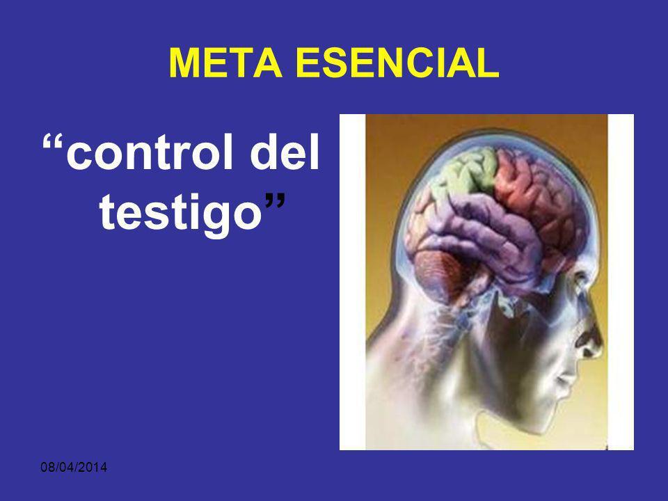 META ESENCIAL control del testigo 29/03/2017