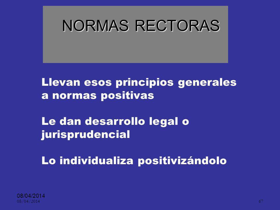 NORMAS RECTORAS Llevan esos principios generales a normas positivas