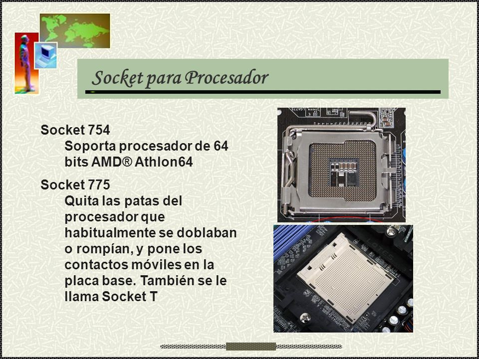 Socket para Procesador