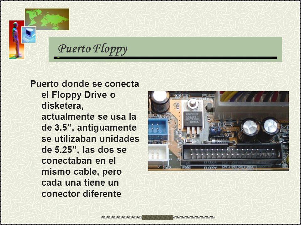 Puerto Floppy