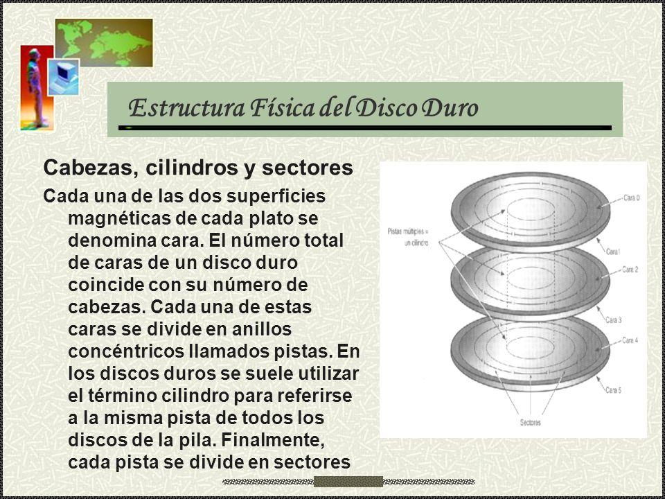 Estructura Física del Disco Duro