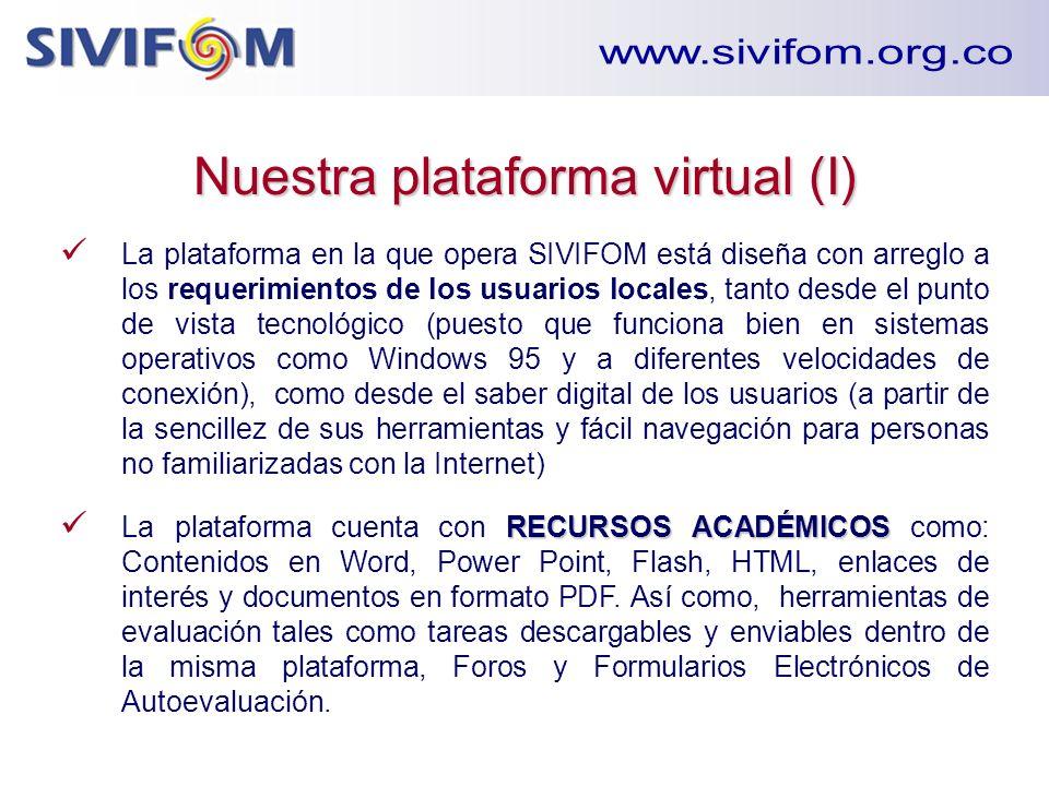 Nuestra plataforma virtual (I)