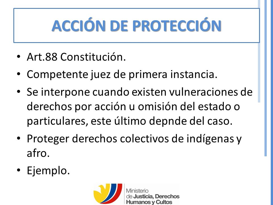 ACCIÓN DE PROTECCIÓN Art.88 Constitución.