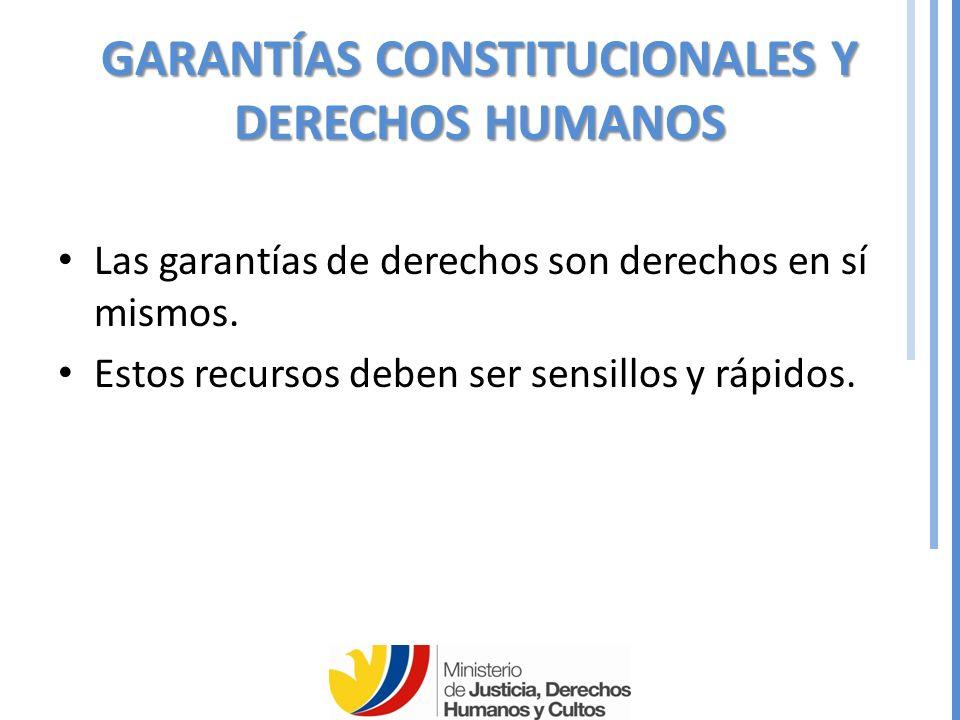 GARANTÍAS CONSTITUCIONALES Y DERECHOS HUMANOS