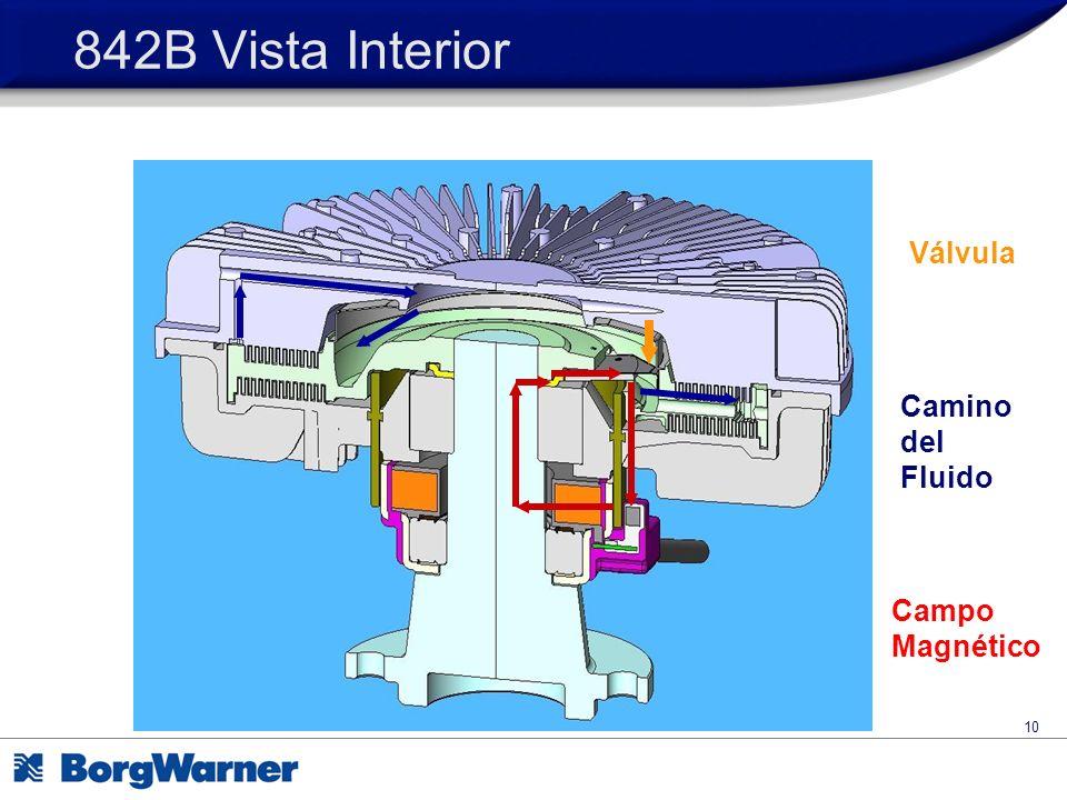 842B Vista Interior Válvula Camino del Fluido Campo Magnético