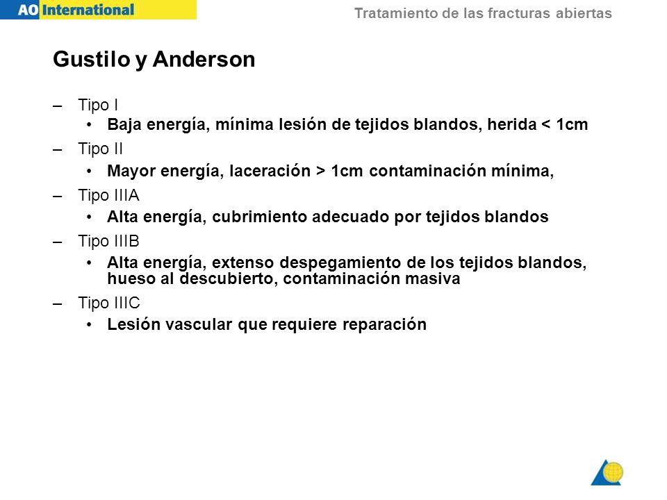 Gustilo y Anderson Tipo I