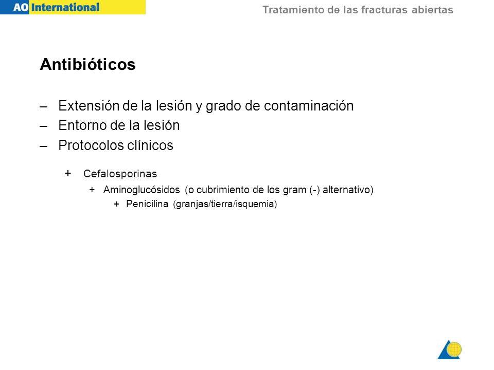 Antibióticos Extensión de la lesión y grado de contaminación