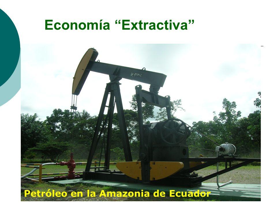 Economía Extractiva