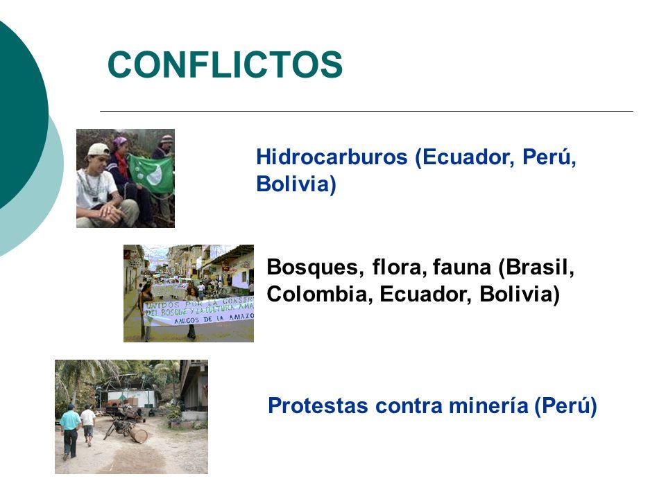 CONFLICTOS Hidrocarburos (Ecuador, Perú, Bolivia)