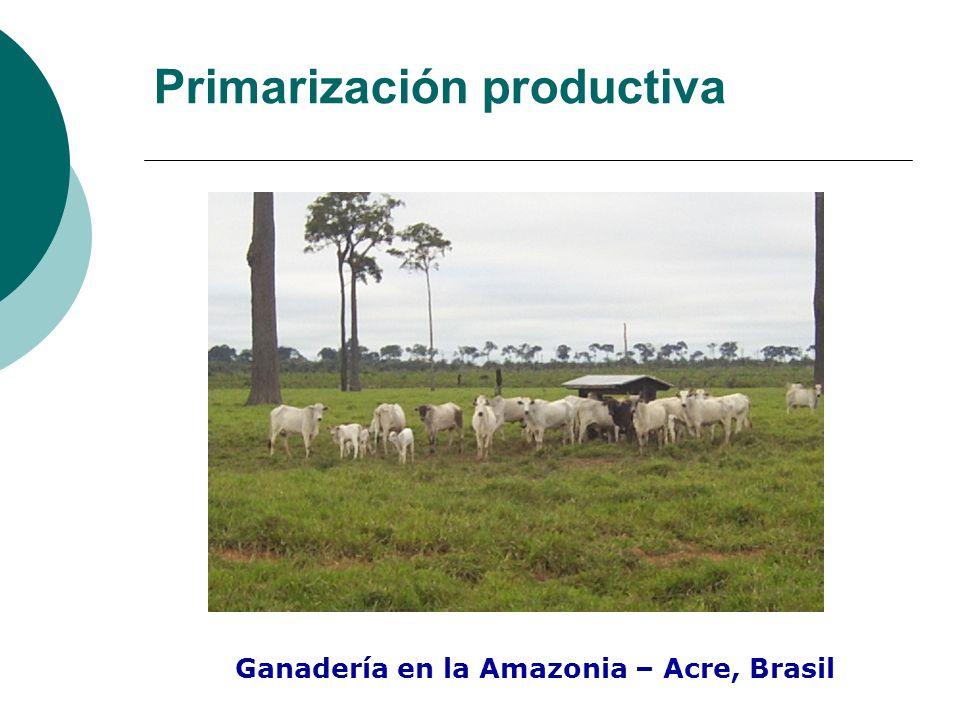Primarización productiva
