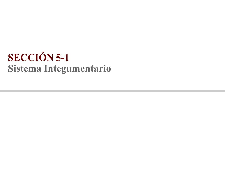 SECCIÓN 5-1 Sistema Integumentario