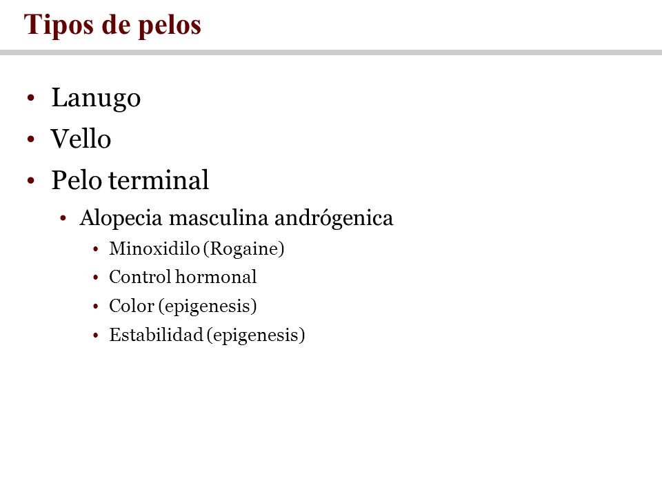 Tipos de pelos Lanugo Vello Pelo terminal