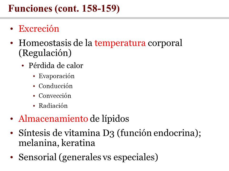 Funciones (cont. 158-159) Excreción