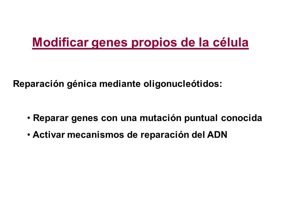 Modificar genes propios de la célula