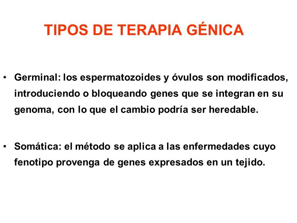 TIPOS DE TERAPIA GÉNICA