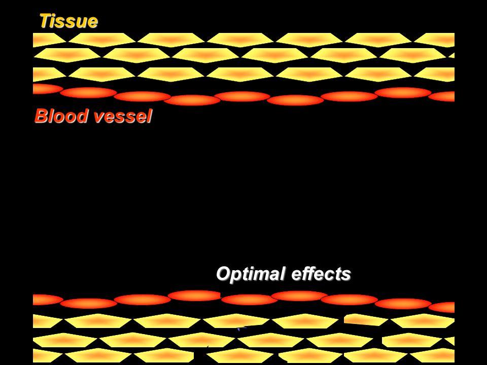 Tissue Blood vessel Drug Optimal effects Pathology Targeting vector