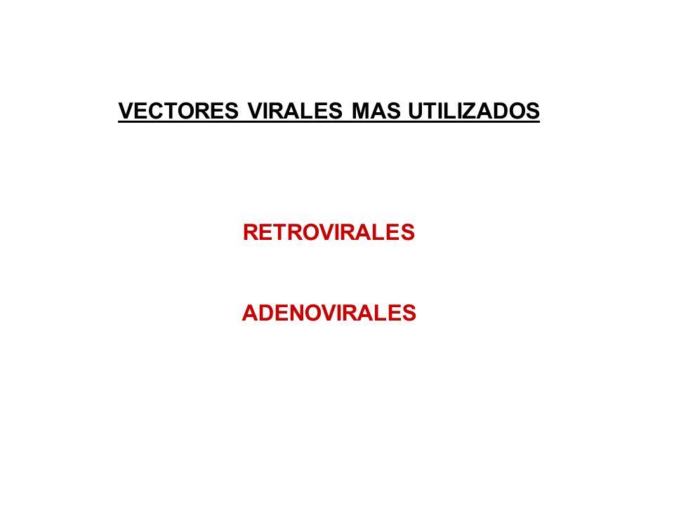 VECTORES VIRALES MAS UTILIZADOS