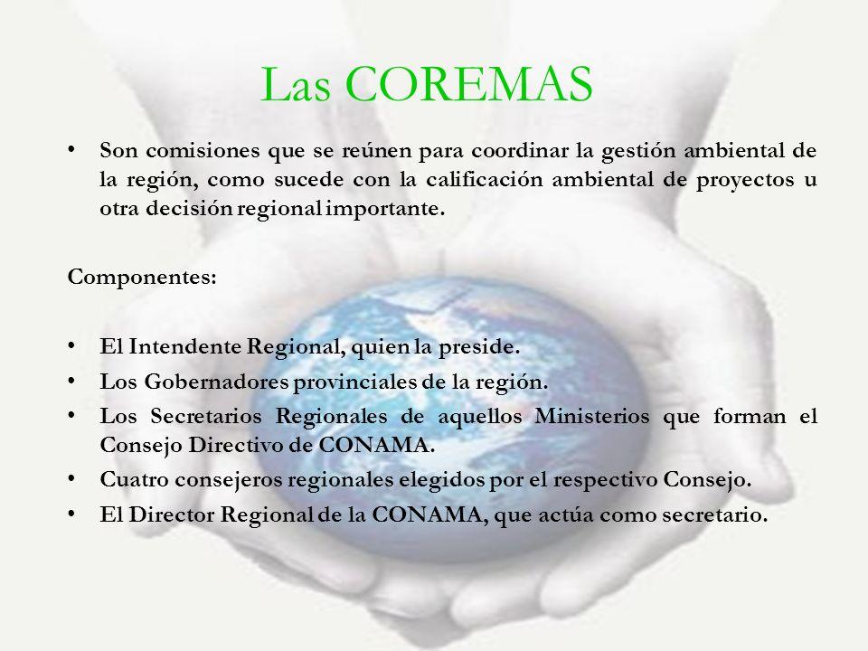 Las COREMAS