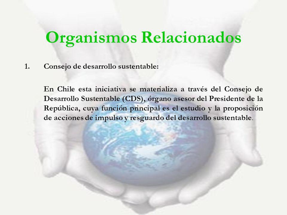 Organismos Relacionados