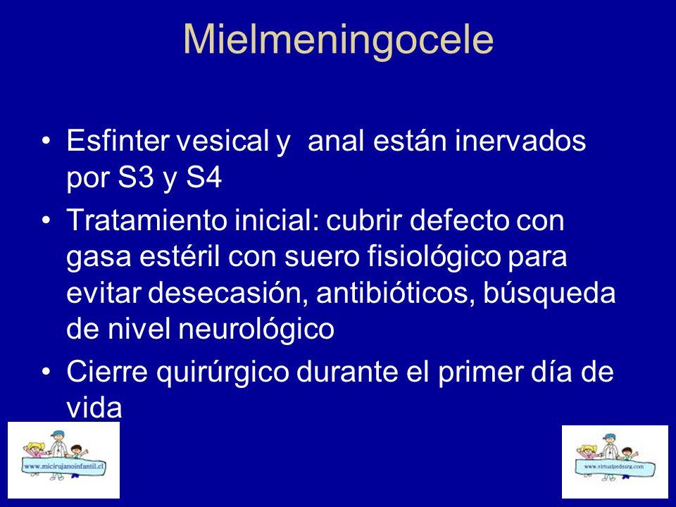 Mielmeningocele Esfinter vesical y anal están inervados por S3 y S4