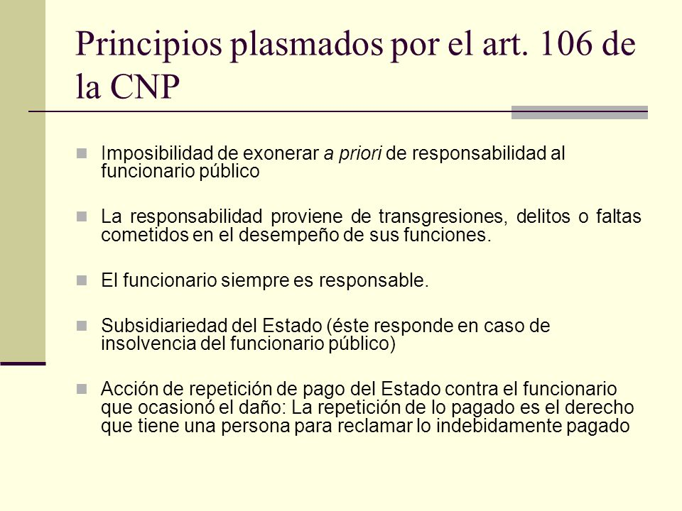 Principios plasmados por el art. 106 de la CNP