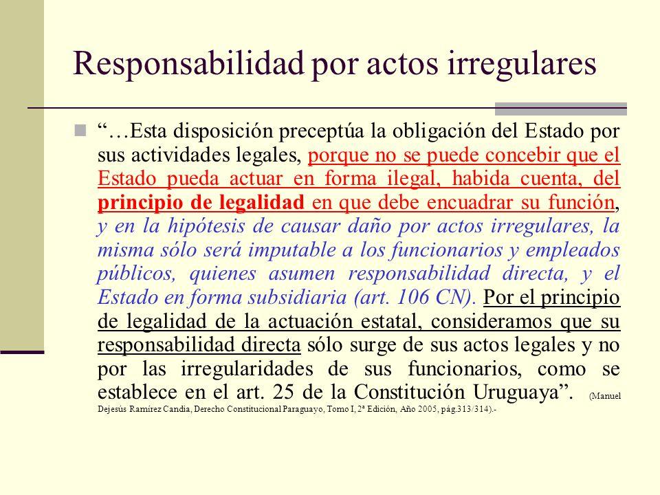 Responsabilidad por actos irregulares