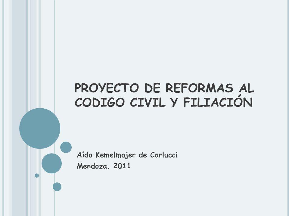 PROYECTO DE REFORMAS AL CODIGO CIVIL Y FILIACIÓN