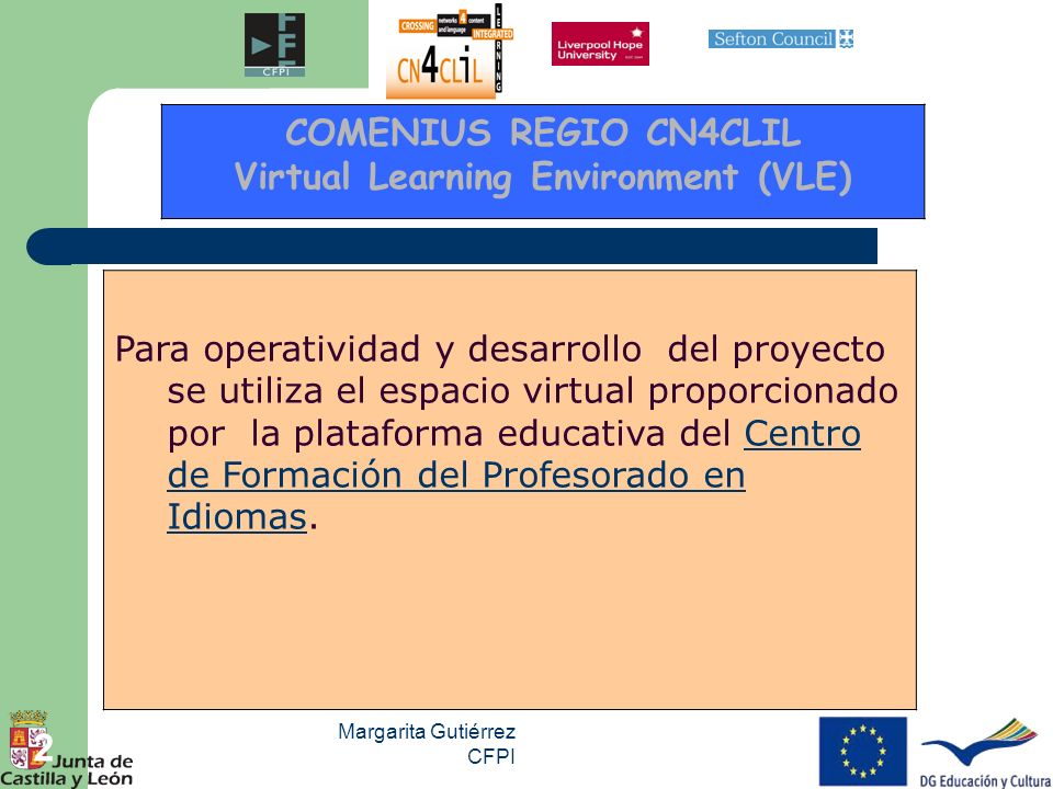 Virtual Learning Environment (VLE)