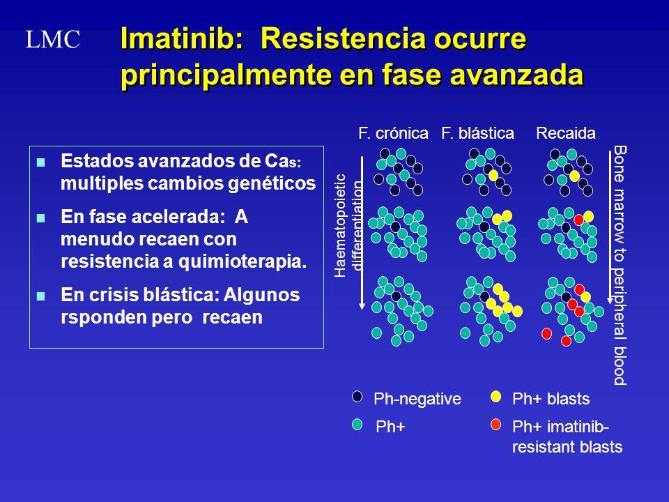 Imatinib: Resistencia ocurre principalmente en fase avanzada