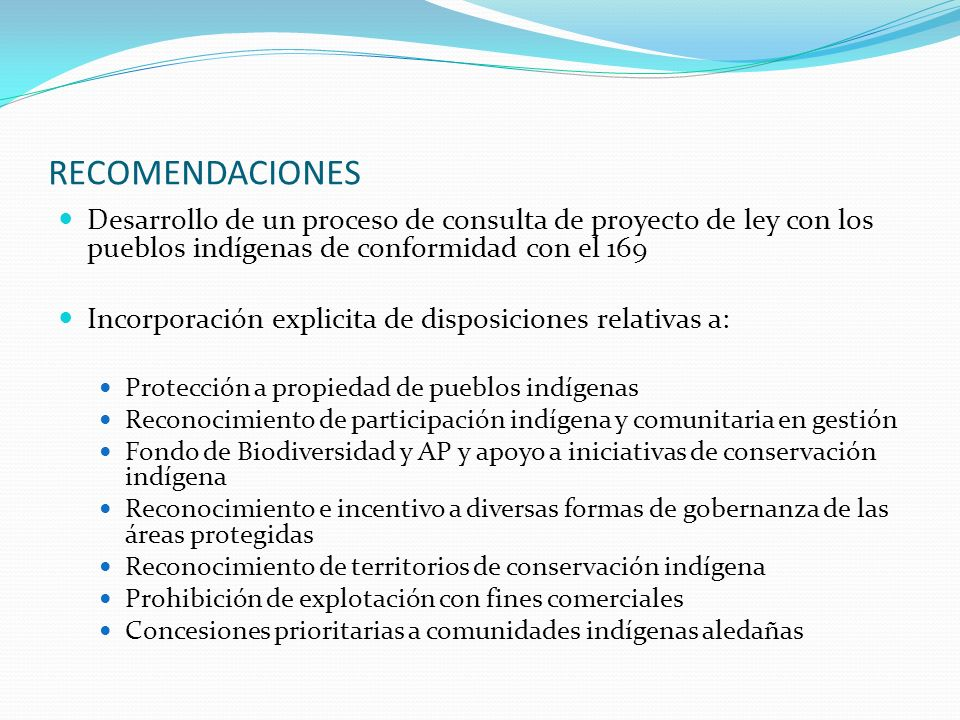 RECOMENDACIONES Desarrollo de un proceso de consulta de proyecto de ley con los pueblos indígenas de conformidad con el 169.