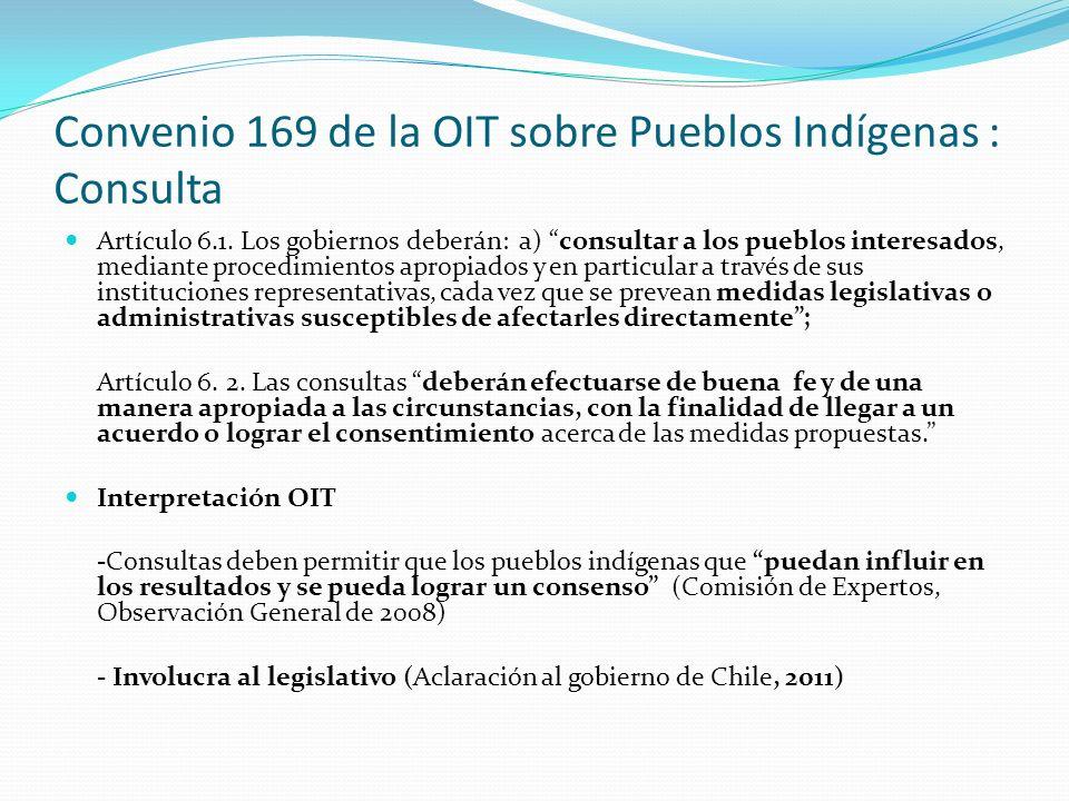 Convenio 169 de la OIT sobre Pueblos Indígenas : Consulta