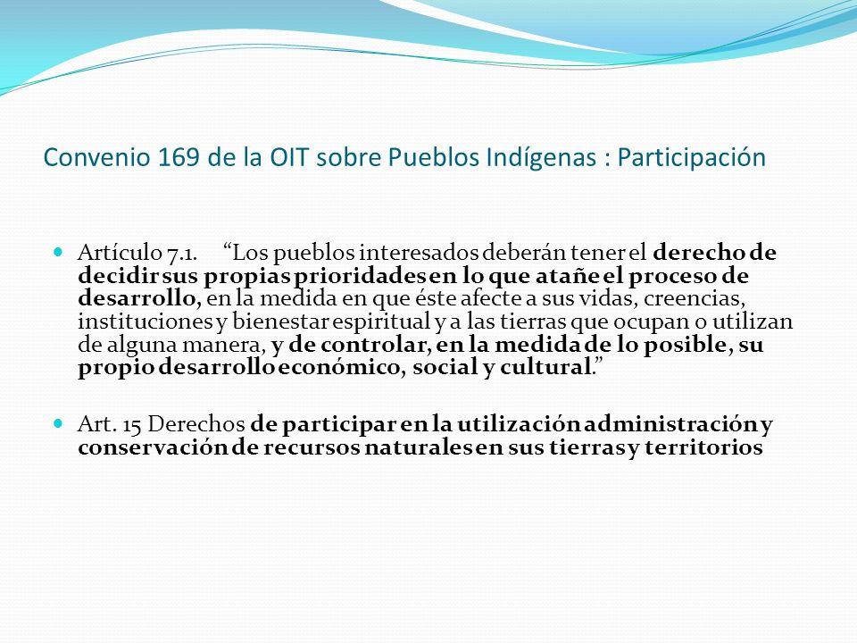 Convenio 169 de la OIT sobre Pueblos Indígenas : Participación