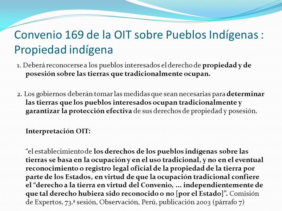 Convenio 169 de la OIT sobre Pueblos Indígenas : Propiedad indígena