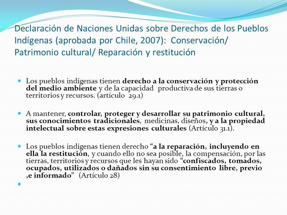 Declaración de Naciones Unidas sobre Derechos de los Pueblos Indígenas (aprobada por Chile, 2007): Conservación/ Patrimonio cultural/ Reparación y restitución