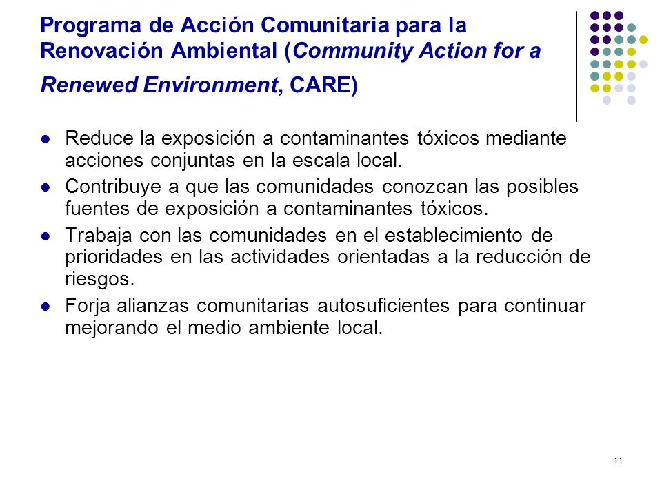 Programa de Acción Comunitaria para la Renovación Ambiental (Community Action for a Renewed Environment, CARE)