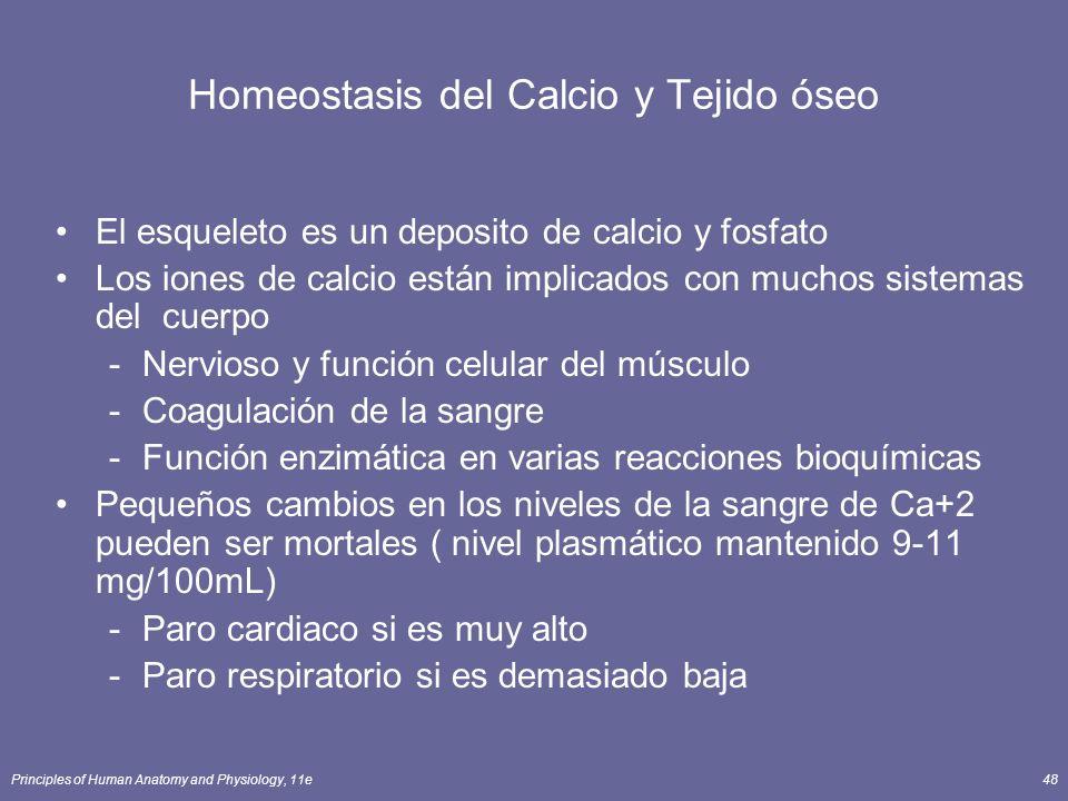 Homeostasis del Calcio y Tejido óseo