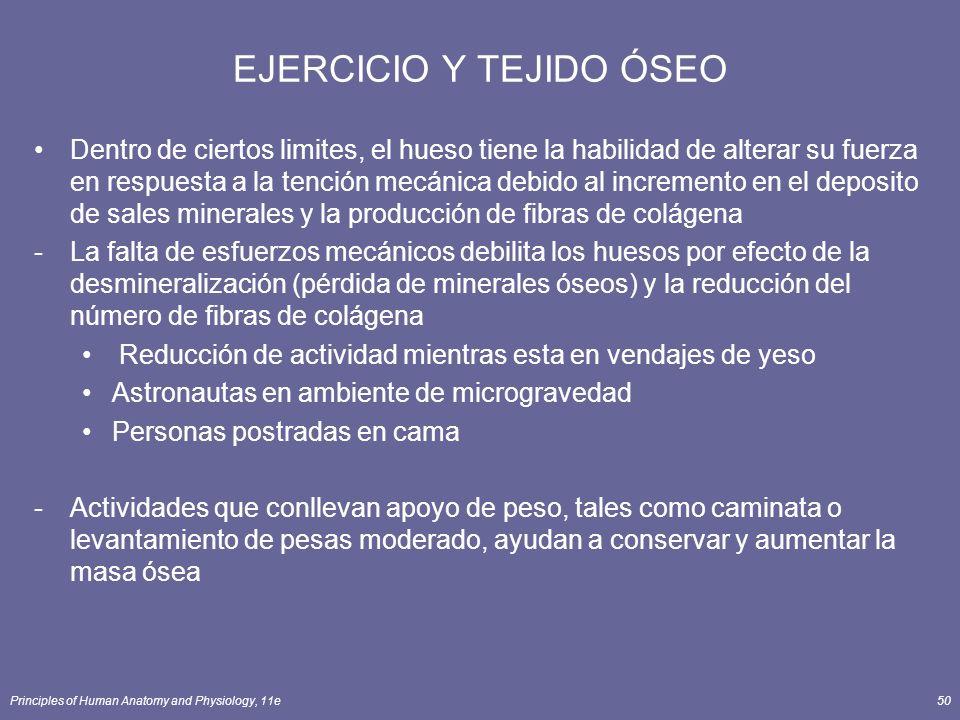EJERCICIO Y TEJIDO ÓSEO