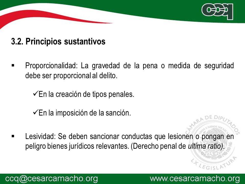 3.2. Principios sustantivos