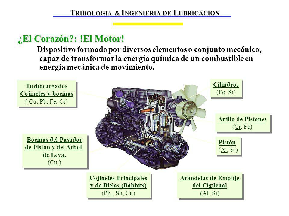 TRIBOLOGIA & INGENIERIA DE LUBRICACION Cojinetes Principales